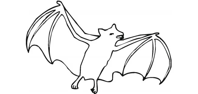Bat Template - Animal Templates Free  Premium Templates