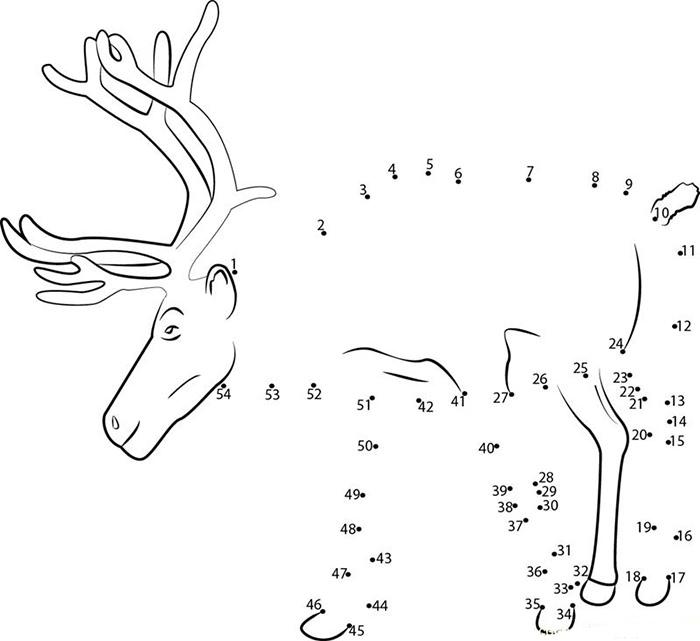 Reindeer Template - Animal Templates Free  Premium Templates