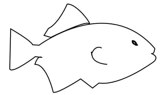 50+ Fish Templates Free  Premium Templates