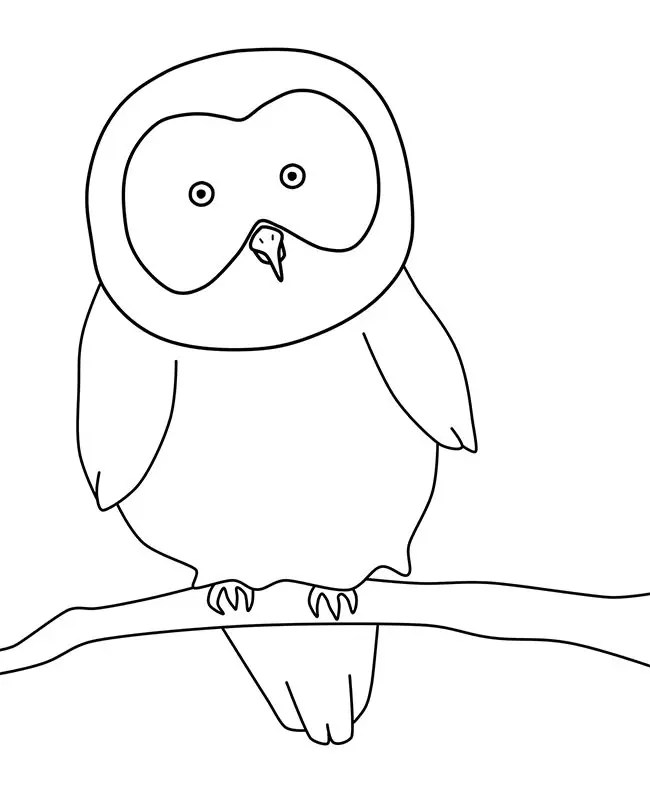 Owl Template - Animal Templates Free  Premium Templates