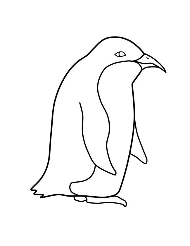 Cute Penguin Template - penguin template