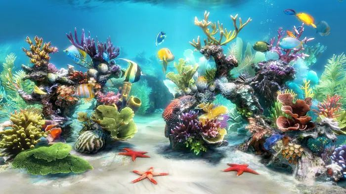 Printable fish aquarium backgrounds