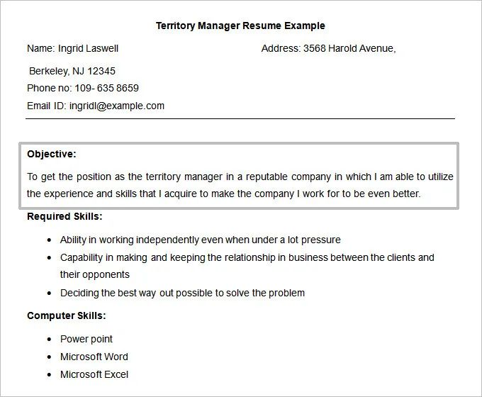 resume objective for territory manager