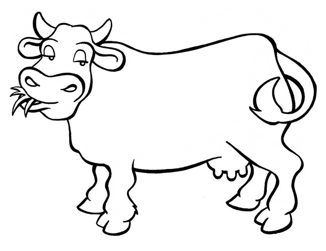 Cow Template Animal Templates Free Premium