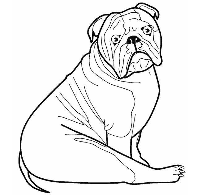 Dog Template - Animal Templates Free  Premium Templates