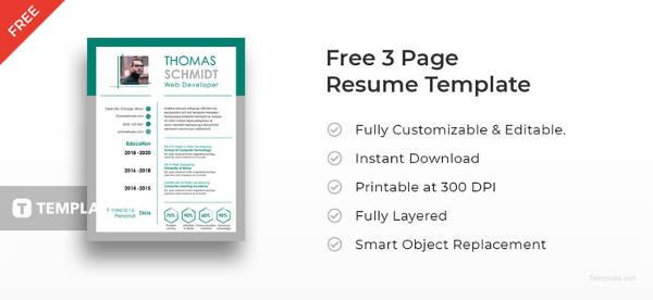 50+ Best Resume Templates to Download Free  Premium Templates