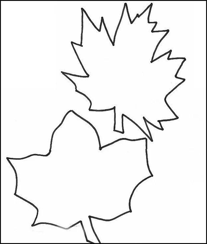 jungle leaf template - Eczasolinf - leaf template