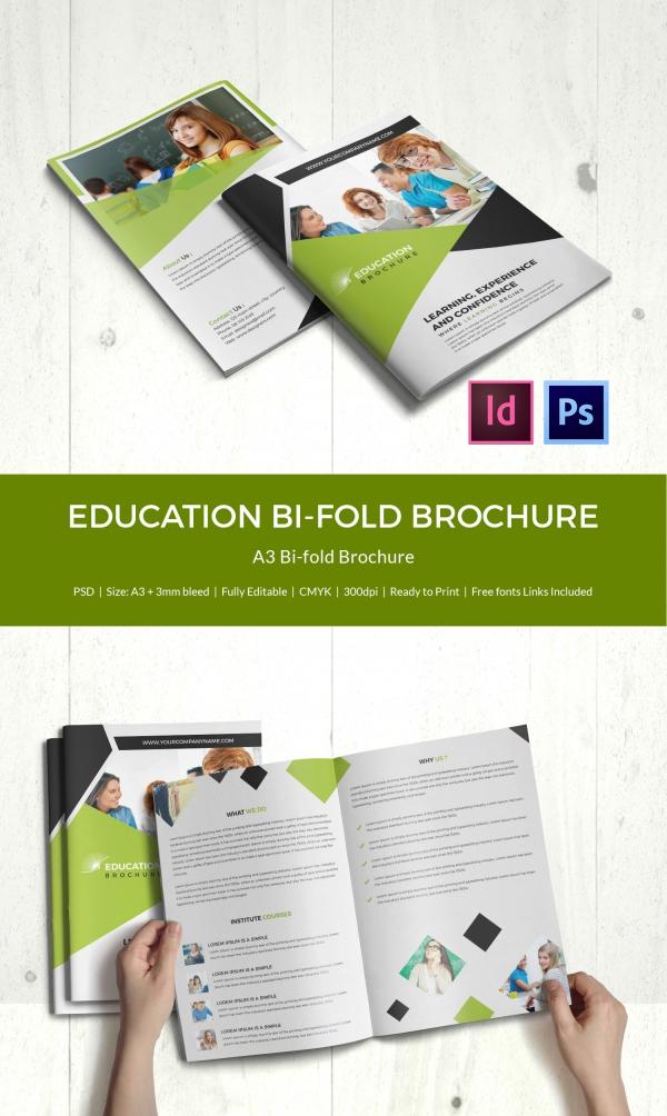 brochure pamphlet template