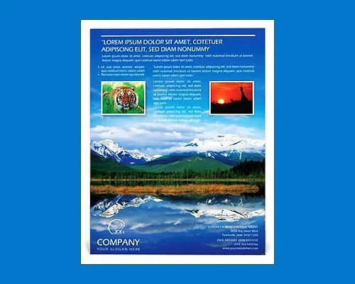 29+ Best Microsoft Word Flyer Templates Free \ Premium Templates - microsoft templates for flyers