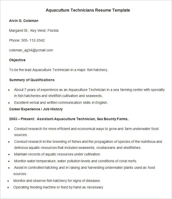 experience resume template free download