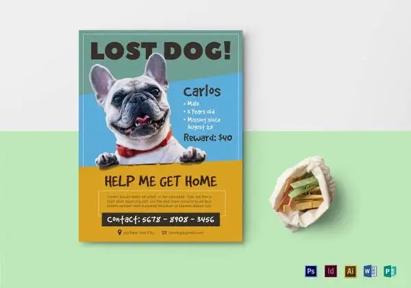 12+ PSD Lost Dog Flyer Templates Free  Premium Templates - Lost Dog Flyer Examples