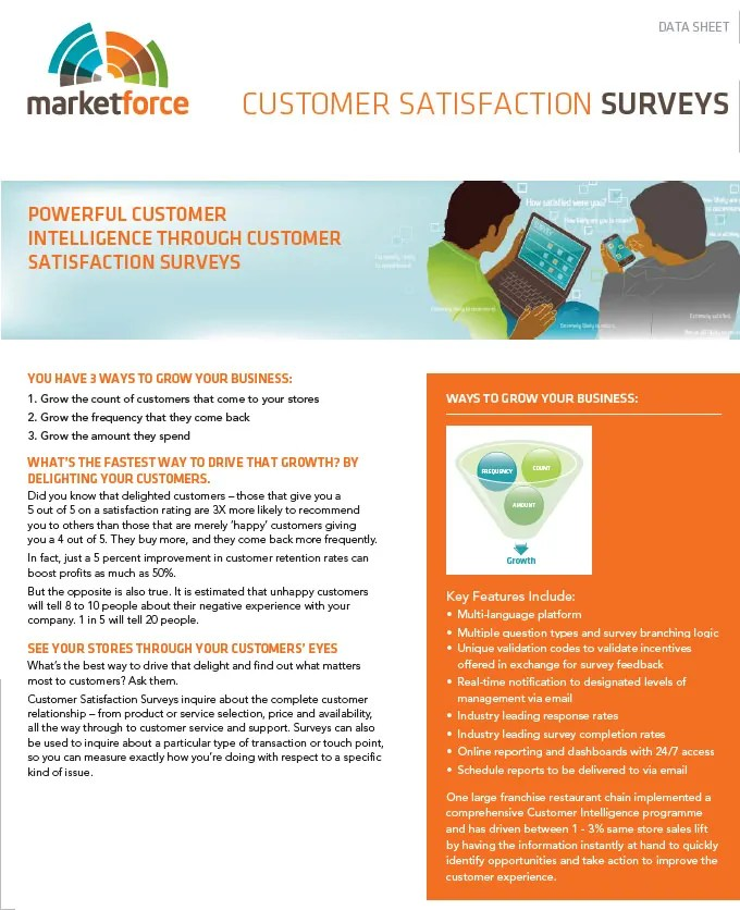Customer Satisfaction Survey Template - 10+ Free PDF, Word Documents