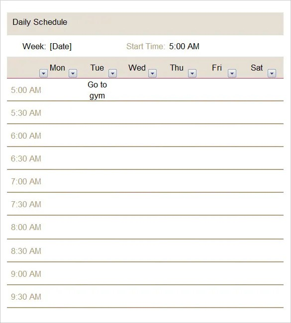 Daily Schedule Template - 37+ Free Word, Excel, PDF Documents