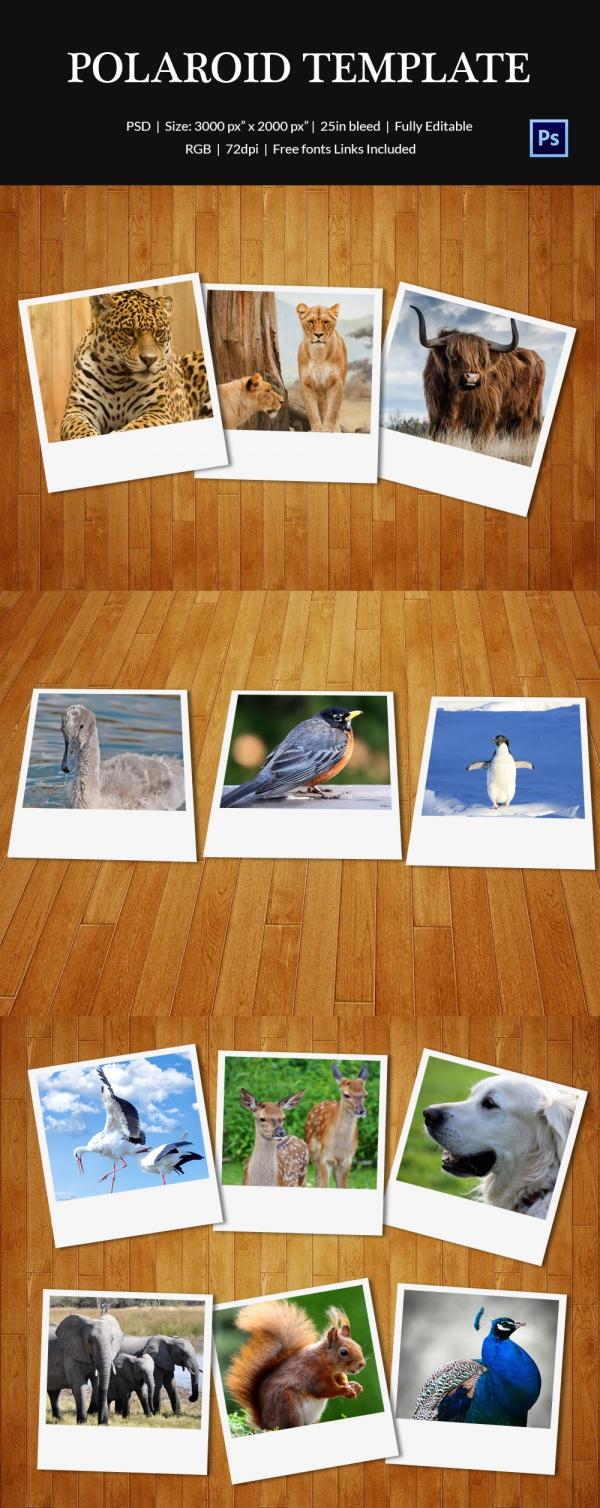 free frame templates