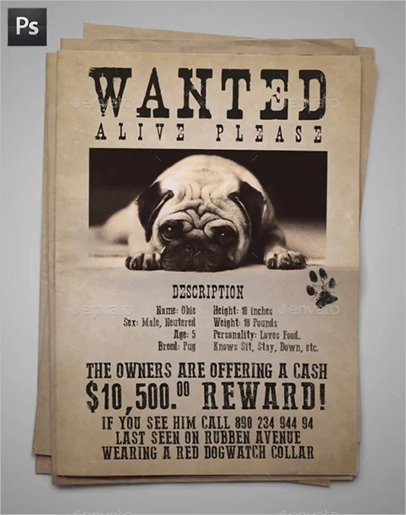11+ PSD Lost Dog Flyer Templates Free  Premium Templates