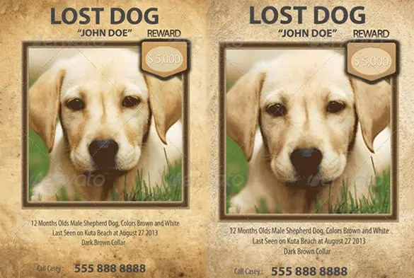 13+ PSD Lost Dog Flyer Templates Free  Premium Templates - missing pet template