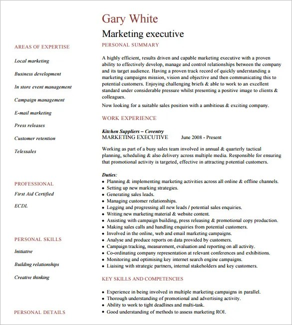 14+ Executive Resume Templates - PDF, DOC Free  Premium Templates