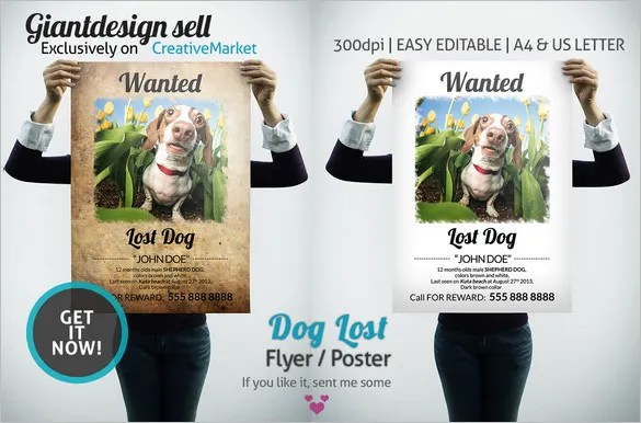 Lost Dog Flyer Template Word - Fiveoutsiders