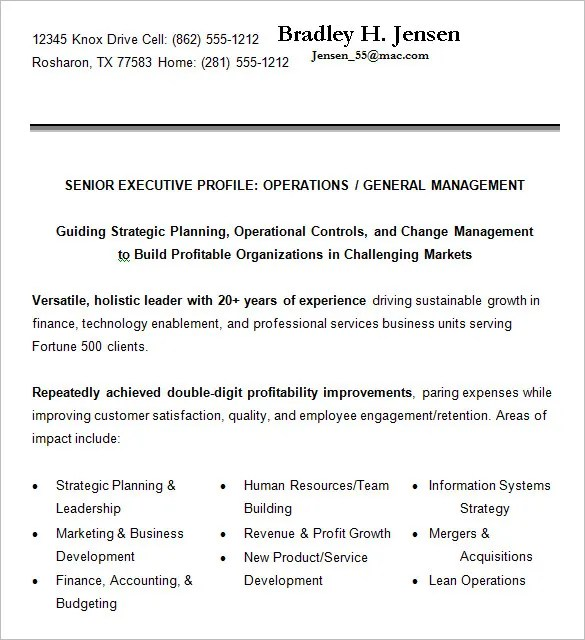 16+ Executive Resume Templates - PDF, DOC Free  Premium Templates