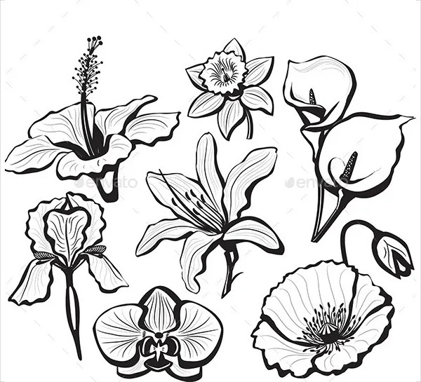 flowers templates - Towerssconstruction