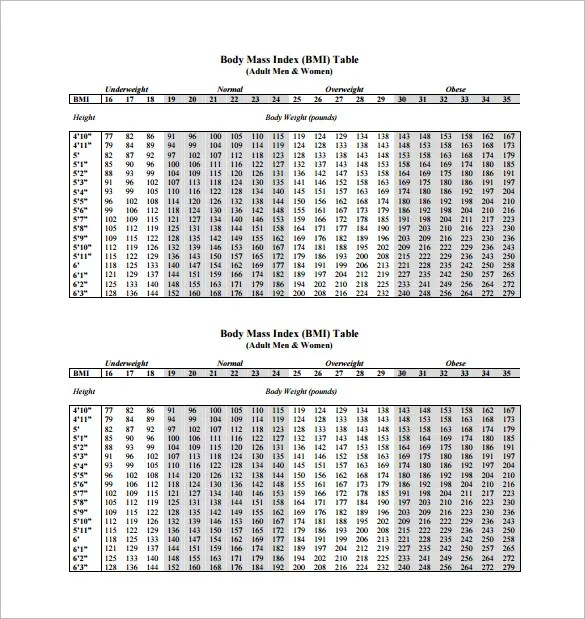 BMI Chart Template \u2013 13+ Free Sample, Example, Format Download