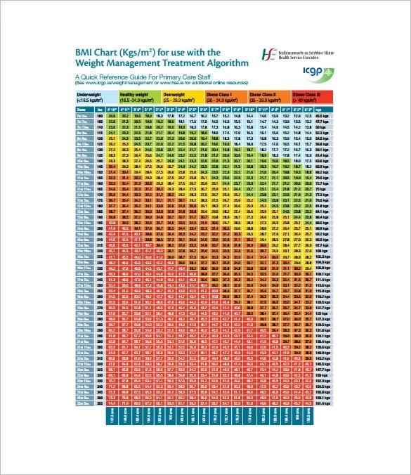 11+ BMI Chart Templates -DOC, Excel, PDF Free  Premium Templates - bmi chart template