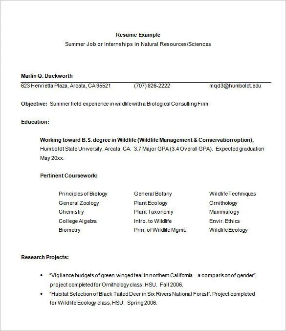 cv for internship amazon example download