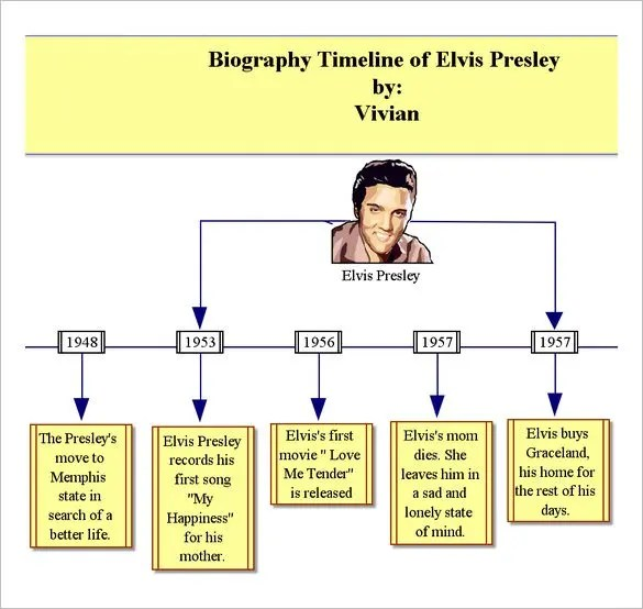 8+ Biography Timeline Templates - DOC, Excel Free  Premium Templates
