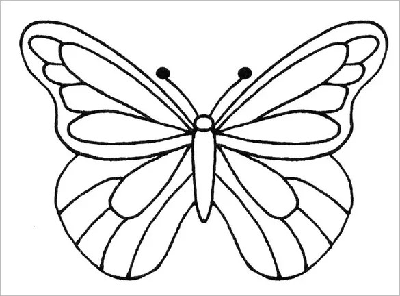 13+ PSD Paper Butterfly Templates \ Designs! Free \ Premium - butterfly template