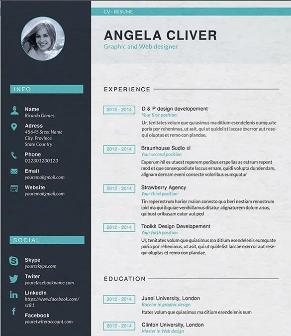 resume template for website designer