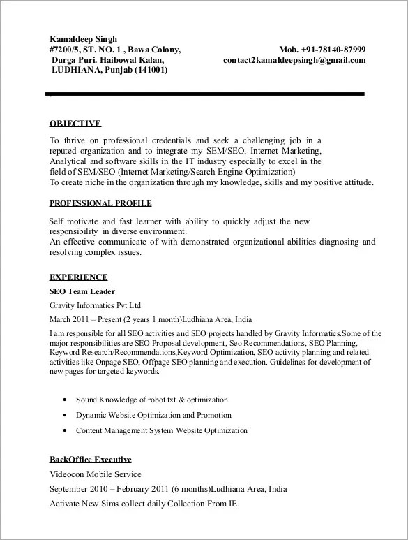 SEO Resume Template \u2013 12+ Free Samples, Examples, Format Download - Seo Proposal Template