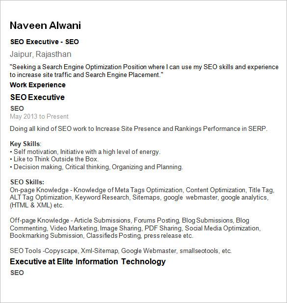 sample seo resume