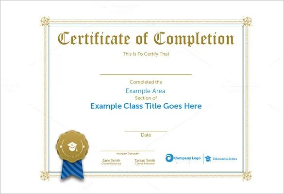 Professional Certificate Template - 21+ Free Word Format Download - blank certificates of completion