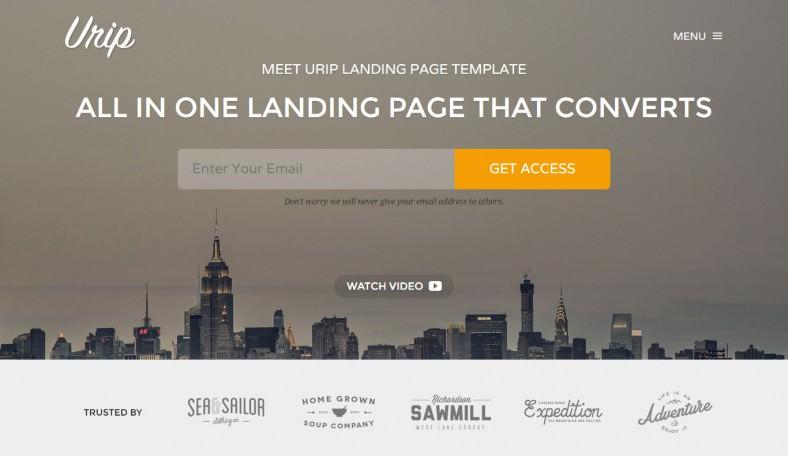 11+ Best Professional Landing Page Templates Free  Premium Templates