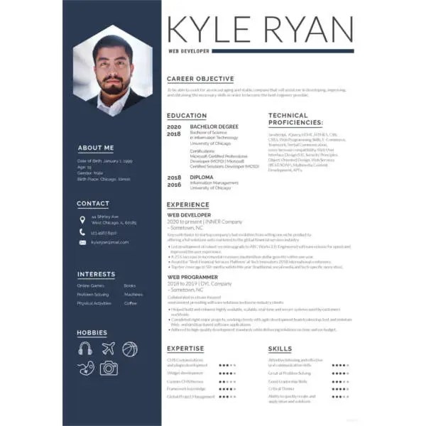 11+ Web Developer Resume Templates - DOC, PDF Free  Premium Templates