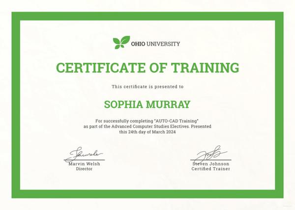 27+ Training Certificate Templates - DOC, PSD, AI, InDesign Free - sample of certificate of training completion