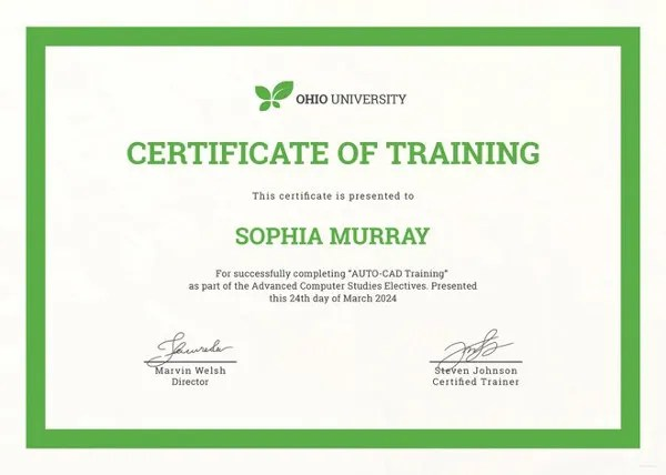 Training Certificate Template - 27+ Free Word, PDF, PSD Format - computer certificate format