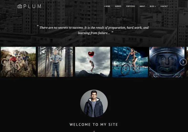 19+ Best HTML Gallery Templates amp; Themes Free  Premium Templates