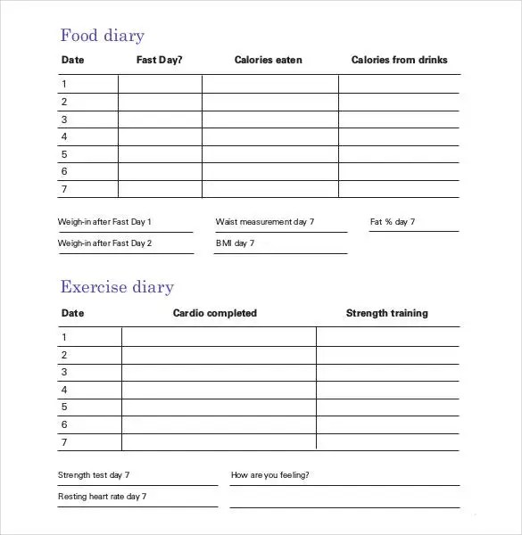Daily Planner Template - 29+ Free Word, Excel, PDF Document Free