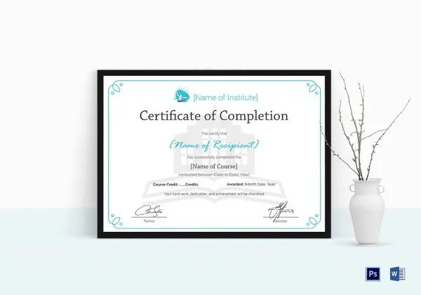 29+ Training Certificate Templates - DOC, PSD, AI, InDesign Free