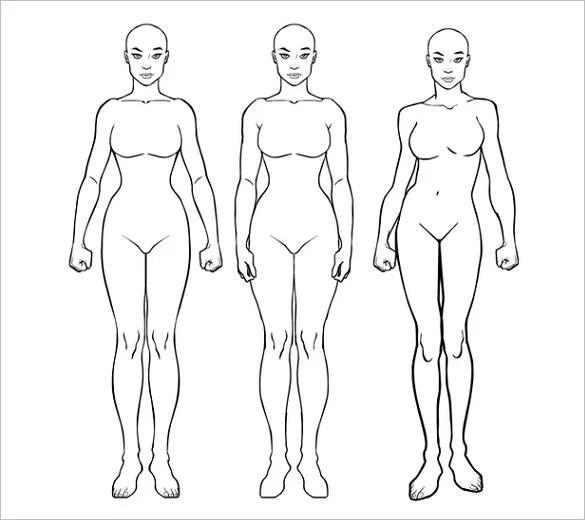 23+ Body Outline Templates - PDF, JPG Free  Premium Templates