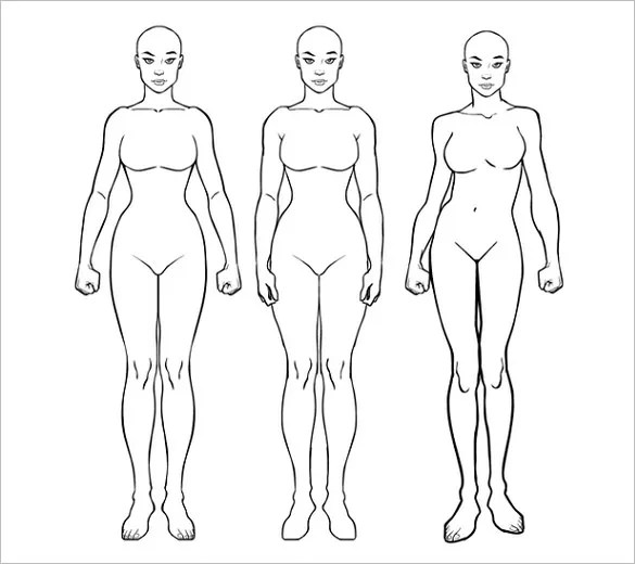 18+ Body Outline Templates - PDF, DOC Free  Premium Templates