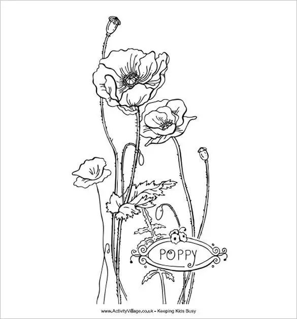 18+ Poppy Coloring Pages - PDF, JPG Free  Premium Templates