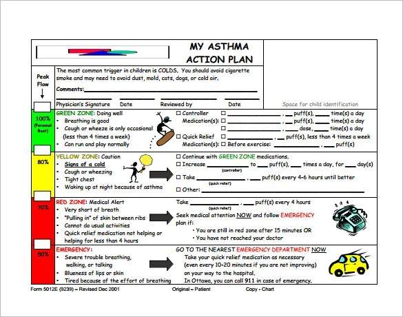Asthma Action Plan Template \u2013 10+ Free Word, Excel, PDF Format