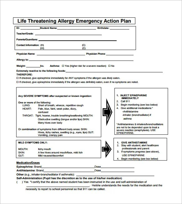 Allergy Action Plan Template u2013 9+ Free Word, Excel, PDF Format - plan of action format