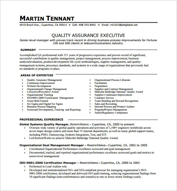 executive resume format template top executive resume writing samples template tools one page resume template