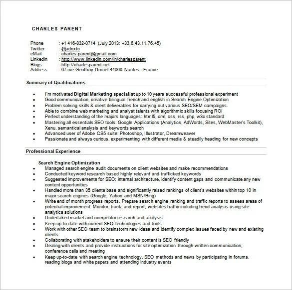 SEO Executive Resume Template \u2013 12+ Free Word, Excel, PDF Format - experience summary resume