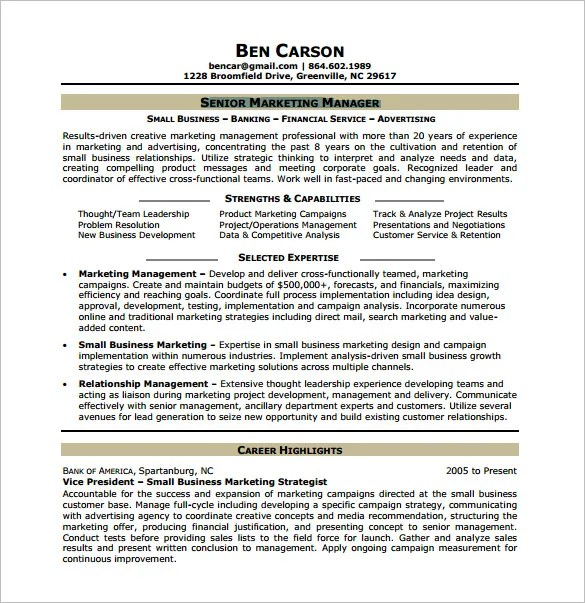Marketing Analyst Resume Template \u2013 10+ Free Word, Excel, PDF Format