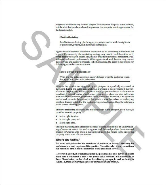 Sales Strategy Template Sales Sales Strategy 2013 Success Sample - how to write a sales plan template