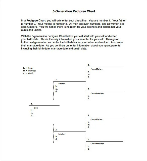 Pedigree Chart Template \u2013 9+ Free Sample, Example, Format Download